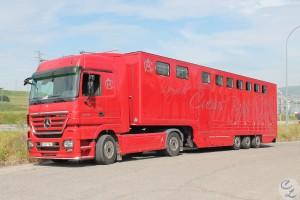 Vehículo para caballos